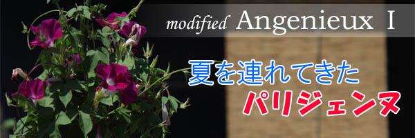 modified Angenieux I 〜夏を連れてきたパリジェンヌ〜
